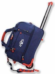 Дорожные сумки на колёсах с выдвижной ручкой TsV (СПб)